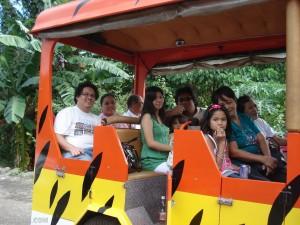 Tiger Safari Train