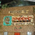 Zoobic Safari Experience