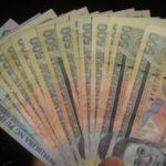 Seven Thousand Nine Hundred Eighty Pesos